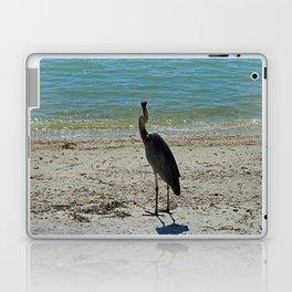 Glib Charmer Laptop & iPad Skin