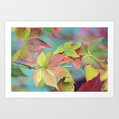 Colorful fall Art Print