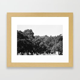 From the earth to the sky Framed Art Print