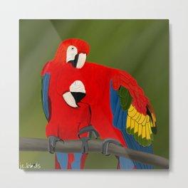 jz.birds Scarlet Macaw Bird Design Metal Print
