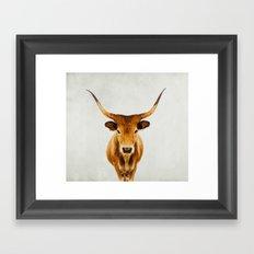 honey Framed Art Print