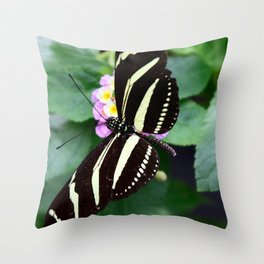 Look at those Wings Throw Pillow