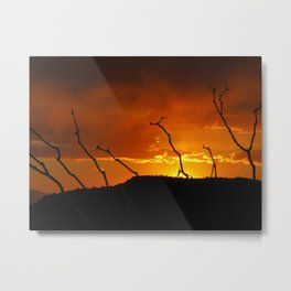Desert Sky on Fire Metal Print