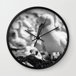 Fou de Bassan #2 Wall Clock