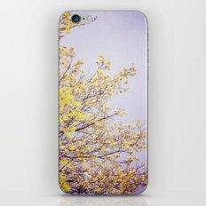 Lilac Skies iPhone & iPod Skin