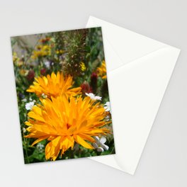 Flower Garden Stationery Cards