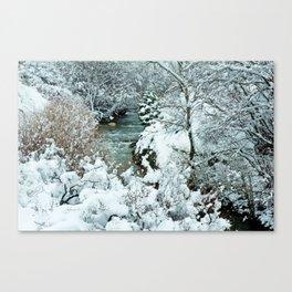 Snowy Banks Canvas Print