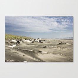 Washington Sand Dunes Canvas Print