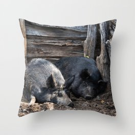 These Little Piggies - Pigs Asleep in Their Sty. Throw Pillow