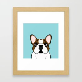 Frenchie - Fawn Pied Framed Art Print