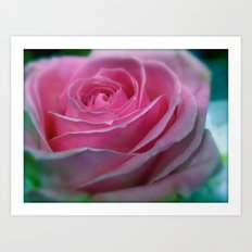 JANUARY ROSE (SOFT PINK GREEN ROSE) Art Print