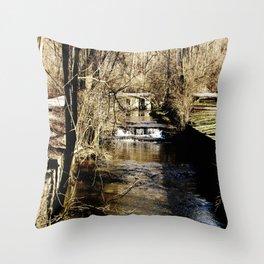 Stream Throw Pillow