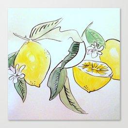 Zitrone  Canvas Print