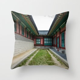 The Path Ends Here Throw Pillow