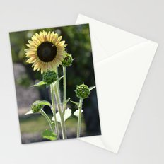 Sunflower with Bee Stationery Cards