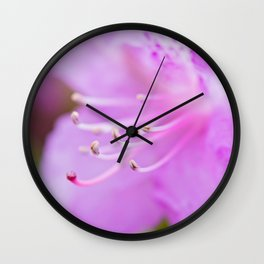 Macro shot of fresh pink rhododendron over blurred background. Shallow depth of field. Wall Clock