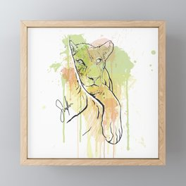Young Lion Framed Mini Art Print