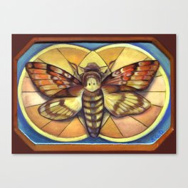Deaths Head Moth Canvas Print
