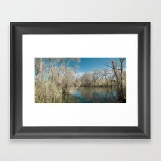 Pond Water Framed Art Print