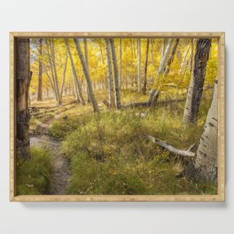Inyo Forest in Autumn Serving Tray