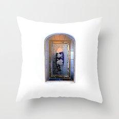 Window, Encinitas, California Throw Pillow