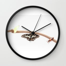 beetle and butterfly Wall Clock