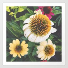 Spring flowers yellow mums Art Print