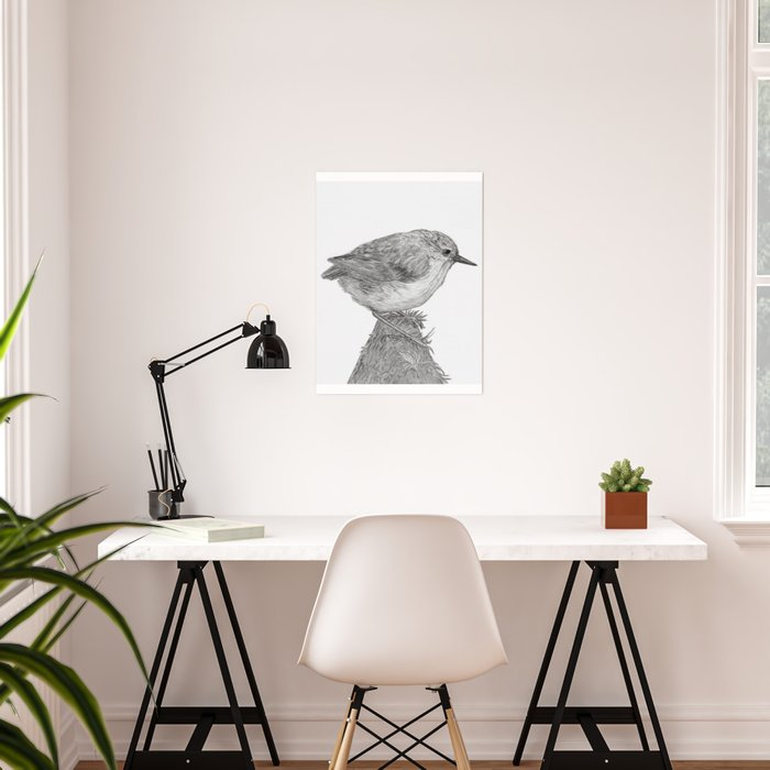 Rifleman - New Zealand Native Bird Poster