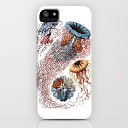 Discomedusa iPhone Case