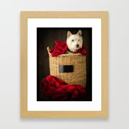 Puppy in the Laundry Basket 2 Westie Dog Framed Art Print
