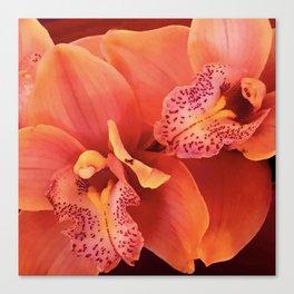 Fine Art Luxurious Pink-Peach Tropical Orchids Canvas Print