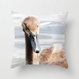 Cygnet Throw Pillow
