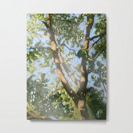 Stratford Tree Metal Print