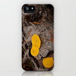 Golden Aspen Leaves iPhone Case
