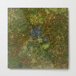 Old stone wall with moss Metal Print