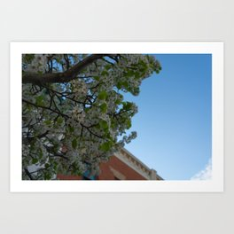 another perspective Art Print