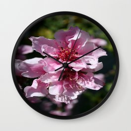 Peach Tree Blossom With Garden Background Wall Clock