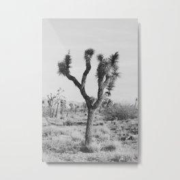 Joshua Tree in Black and White Metal Print
