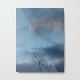 Reach Up To The Sky Metal Print