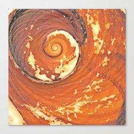 Shiva Eye Canvas Print