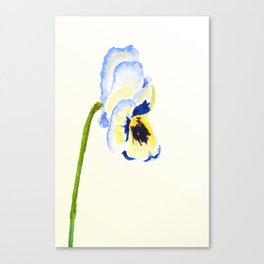 one  pansy Canvas Print