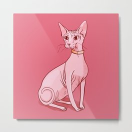 Nude Cat - Hairless Sphynx Kitty Wearing a Collar - Elegant - Wrinkles - Pink Metal Print