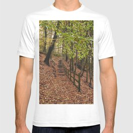 Steps through autumnal woodland. Derbyshire, UK. T-shirt