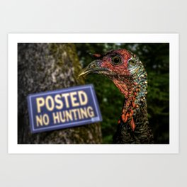 Wild Turkey Hunting Art Print