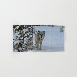 Lone wolf in the snow Hand & Bath Towel
