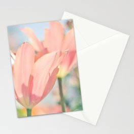 World Of Colors Stationery Cards