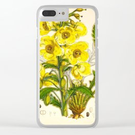 Yellow Himalayan Flowers Botanical Scientific Illustration Vintage Art Clear iPhone Case