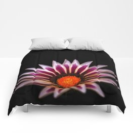 Big Kiss White Flame Flower Comforters