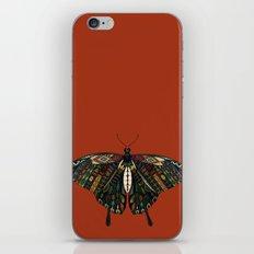 swallowtail butterfly terracotta iPhone & iPod Skin