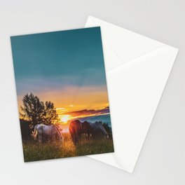 Horse Sunrise (Color) Stationery Cards